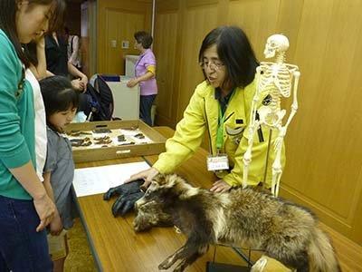 これはチンパンジーの前足