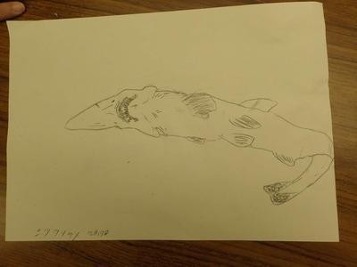 作品、サメの絵�
