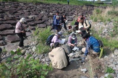早川河原で石の観察をする皆さん