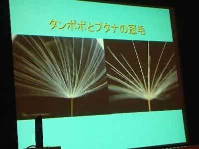 野田先生の講演スライド