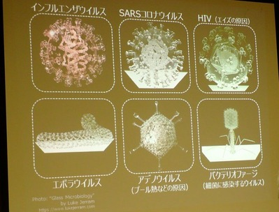 ウイルスのガラス模型20181110 (8)
