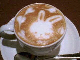 latte3_3SA392331