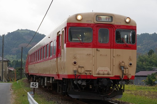 IMGP9586