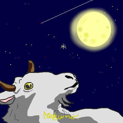 ロンリー山羊
