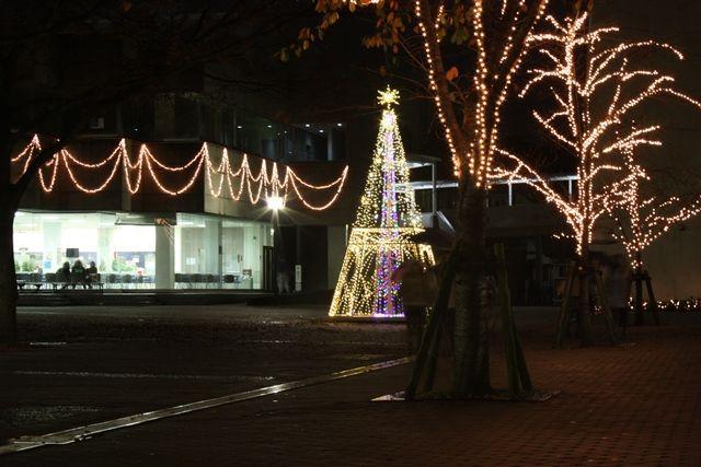 IMG_8248 イルミネーション2011