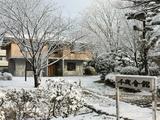 雪の千歳会館