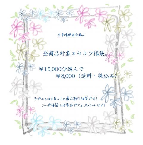 self2014ss_1