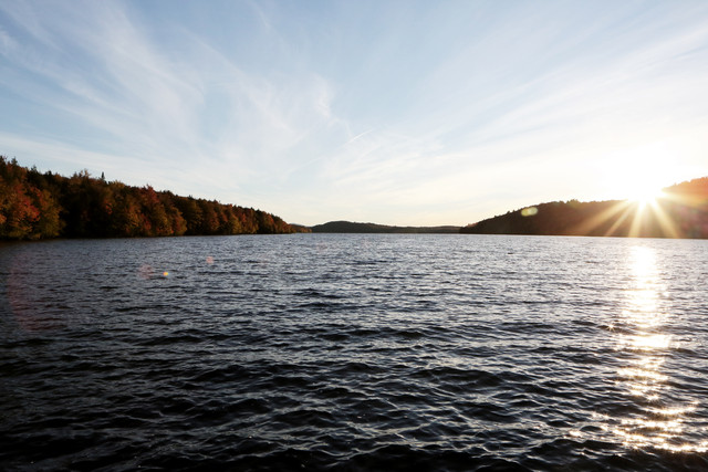 Life-of-Pix-free-stock-photos-lake-nature-forest-LEEROY