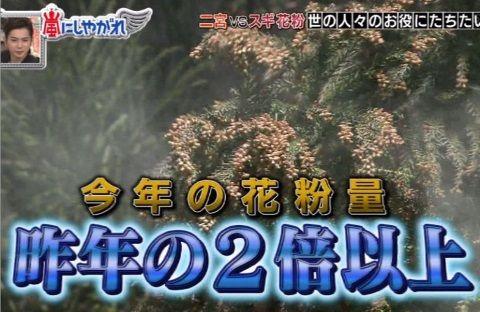 arashiya_0411_kafun_001_00