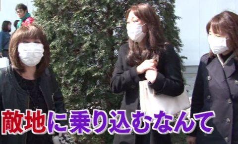 arashiya_0411_kafun_001_02