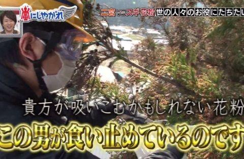 arashiya_0411_kafun_004_05