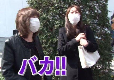 arashiya_0411_kafun_001_03