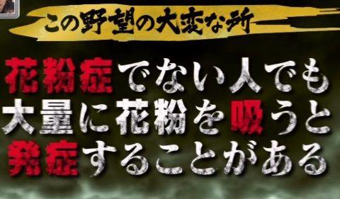 arashiya_0411_kafun_003_02