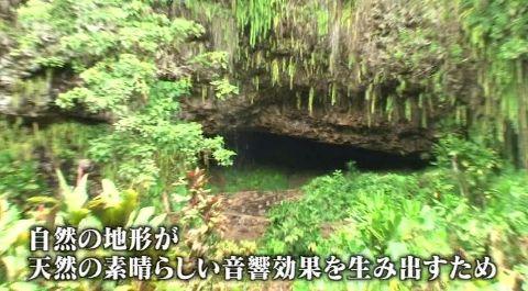sakuraiHAWAI09_05