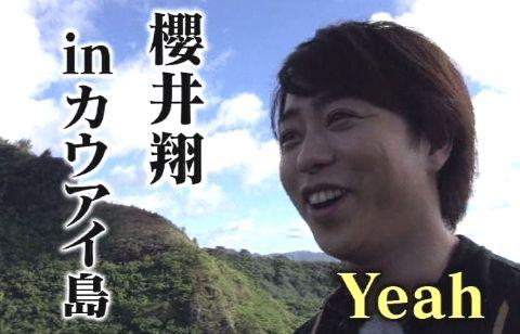 sakuraiHAWAI12_3
