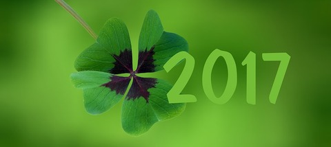 four-leaf-clover-1929875__340