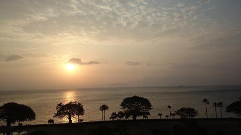 指宿の朝陽16,4,20,1賀茂川
