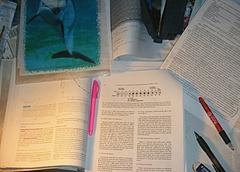 よくわからん免疫生態学の論文と向き合う・・・(泣)