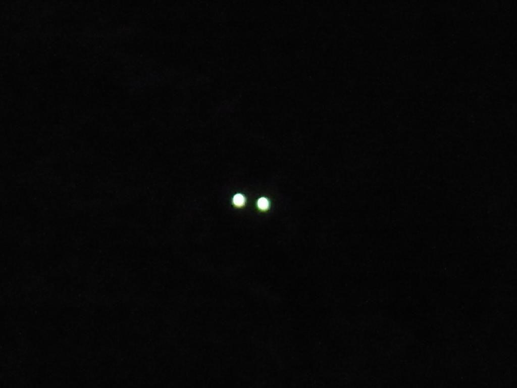 闇夜のElectric Eye!:くぼかわ...