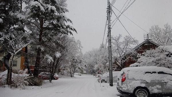 11-26 雪です-1