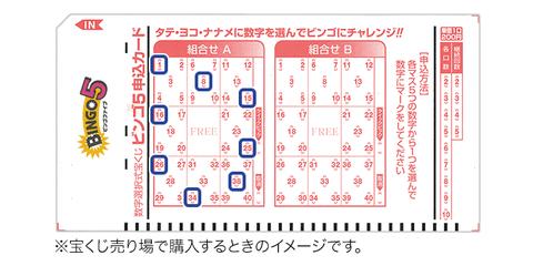 pic-bingo5-buy001