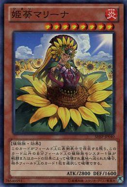 姫葵マリーナ