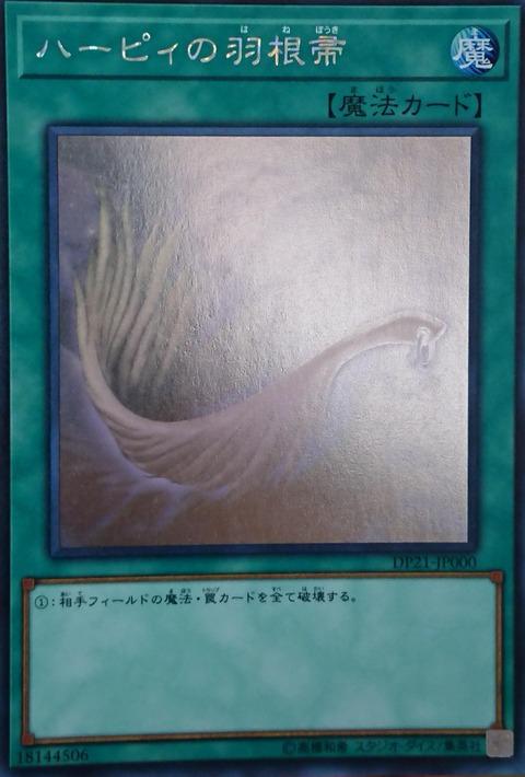 ハーピィの羽根帚 ホロ