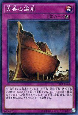 方舟の選別