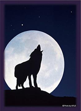 「月下の孤影」リバイバル