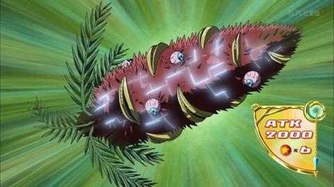 捕食植物バンクシアオーガ