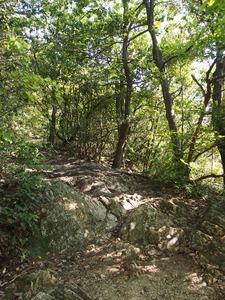 馬の背登山道01