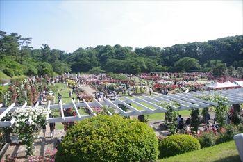 川崎市多摩区にある生田緑地ばら苑の景色