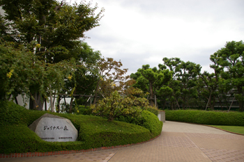 横浜相鉄ジョイナスの屋上「ジョイナスの森」