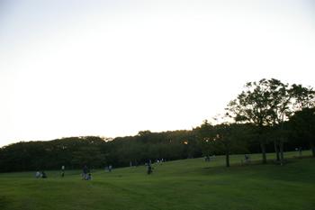 横浜根岸森林公園の原っぱ