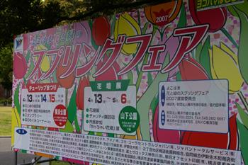 横浜山下公園「スプリングフェア」