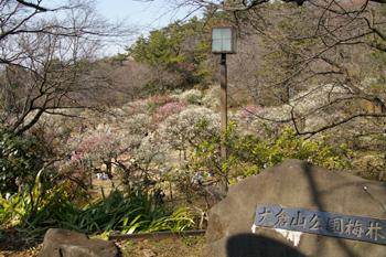 大倉山公園入り口