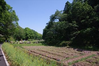 第33回全国都市緑化よこはまフェアの里山ガーデン