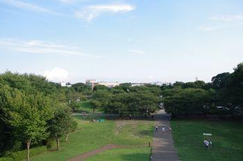 横浜市旭区にある公園「県立四季の森公園」の原っぱ