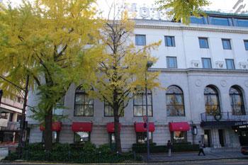 横浜山下公園前の銀杏並木とホテルニューグランド