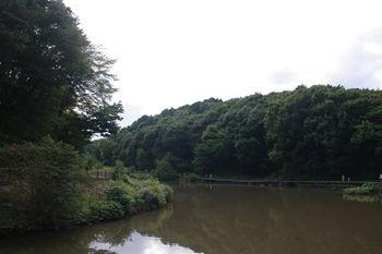横浜市旭区にある公園「県立四季の森公園」の池