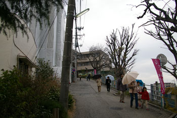 横浜大倉山の観梅会への道