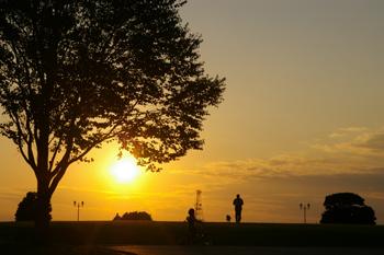 横浜根岸森林公園の夕日とシルエット