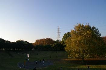 岸根公園のせせらぎ広場