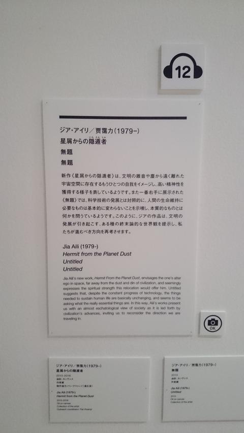 森美術館 宇宙と芸術展 ジア・アイリ 解説