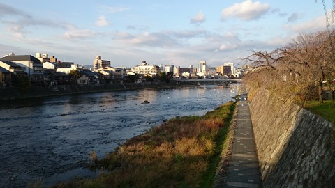 加茂川 京都 冬 夕暮れ