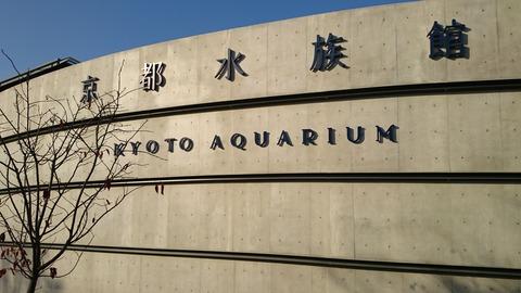 京都水族館 入口