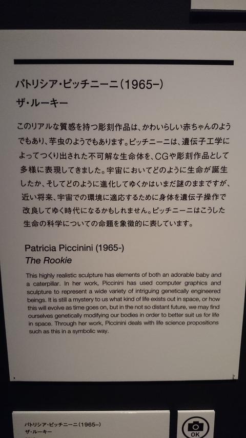 森美術館 宇宙と芸術展 パトリシア・ピッチニーニ 解説