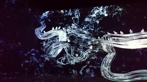 森美術館 宇宙と芸術展 チームラボ インスタレーション カラス02