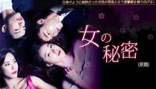韓国ドラマ 女の秘密 DVD