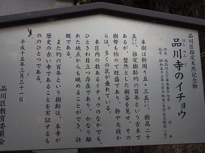 048-1 解説